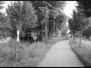 Dorfen - Velden (Vils)